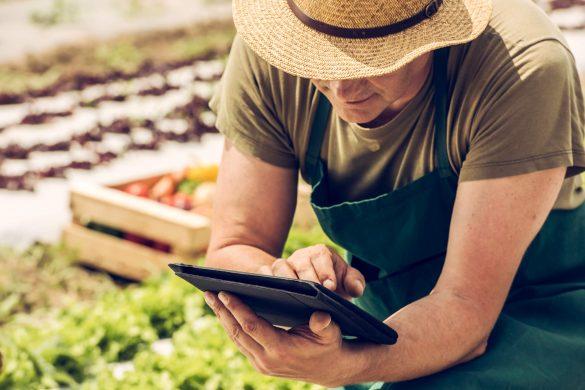 A emissão de NF-e para produtor rural é mais um passo na implementação da NF-e para todos os contribuintes. Saiba mais em nosso artigo no blog!